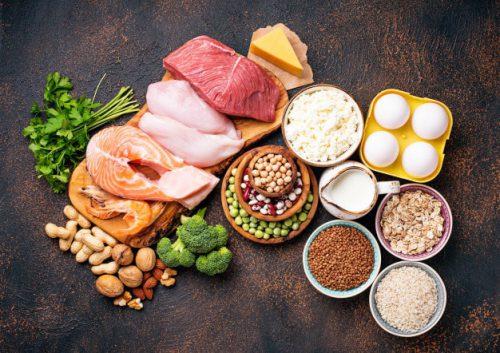 منابع پروتئینی در غذای کودک